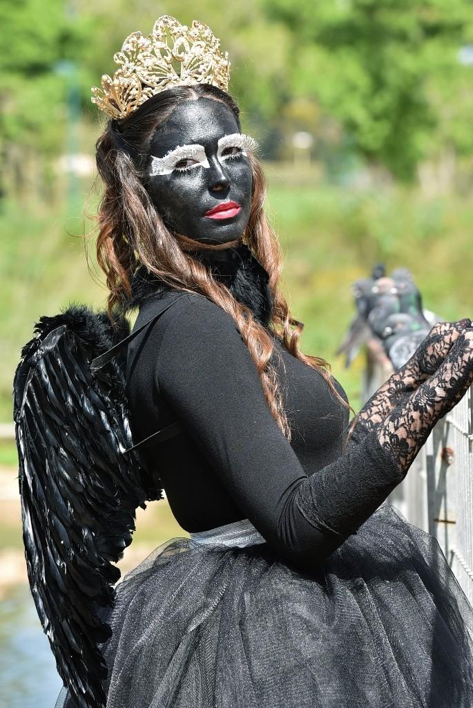 יש ברבור שחור באגם